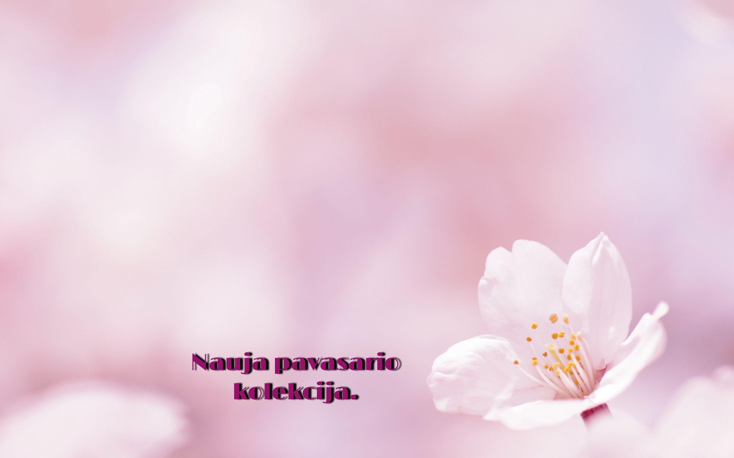 pavasarioo